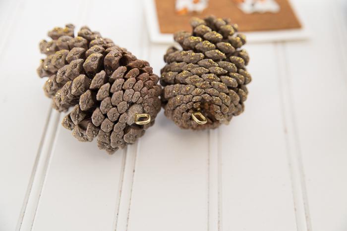 Hanging Pinecones-9512
