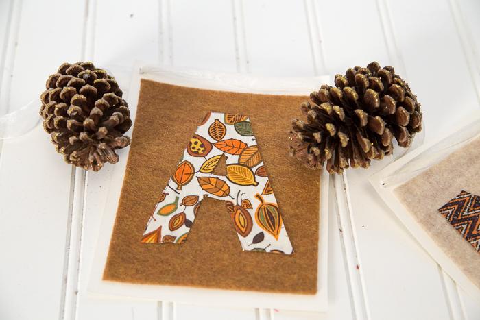 Thanksgiving Pine Cones DIY-9524