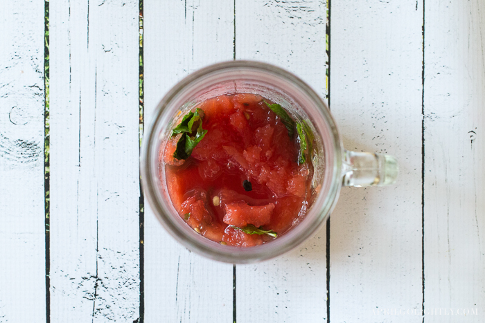 Watermelon Cocktail-9921