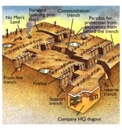 then look at the diagrams below use the diagrams and what you learned from the interactive to complete the interactive trench activity section in your  [ 1024 x 768 Pixel ]