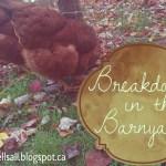 Breakdown in the Barnyard