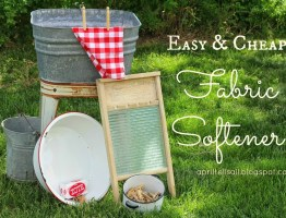 Easy and Cheap Fabric Softener