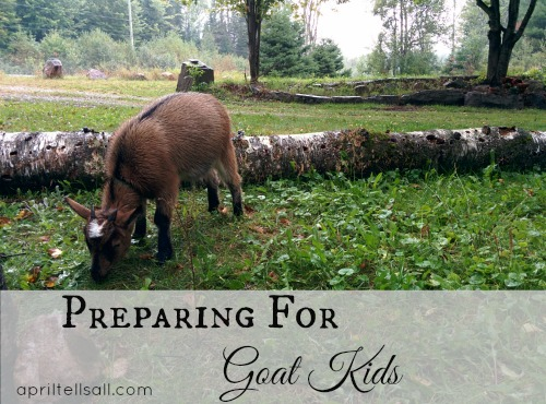 Preparing for Goat Kids
