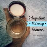 2 Ingredient Makeup Remover