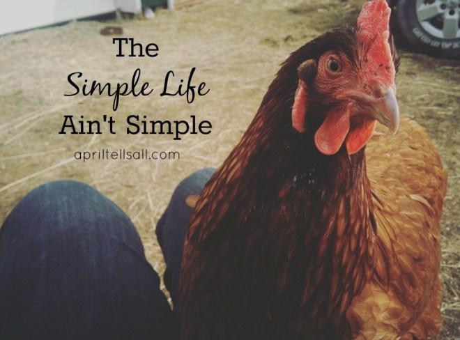 simplelifetitle