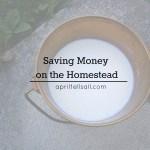 Saving Money On The Homestead