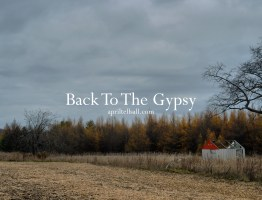 Back To The Gypsy