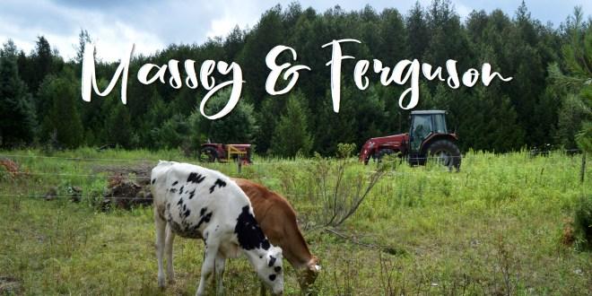 Massey & Ferguson