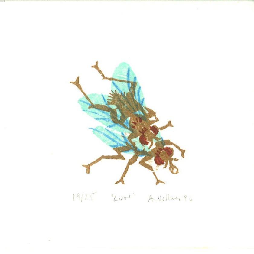 1996loveflies