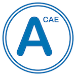 Advanced CAE C1 Ebook Example pdf
