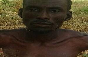 Boko Haram Financier Arrested In Borno