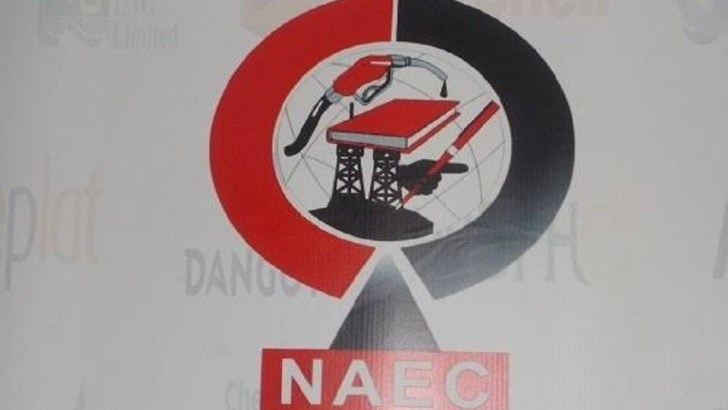 NAEC Hosts Policy Debate on Nigeria's Energy Future