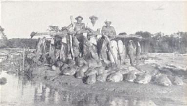 Da esquerda para a direita: Renato Almeida Padro, Ezio Toledo, o sertanista Joaquim Momesso e a 'pequena' quantidade de peixes pescados.