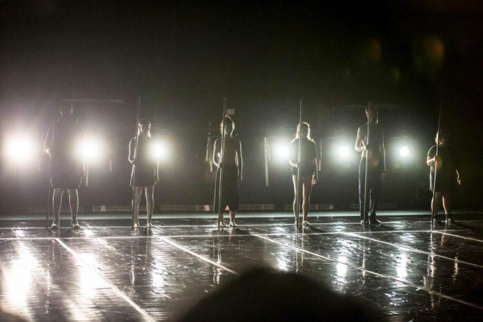 Espetáculo Protocolo Elefante – Grupo Cena 11 Cia de Dança (2)