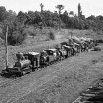 locomotiva-1_Eng-Central