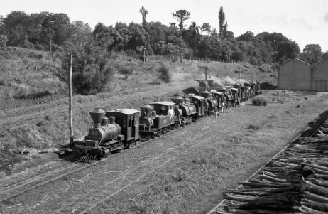 Locomotiva no Engenho Central I - Foto: Cícero Correa dos Santos