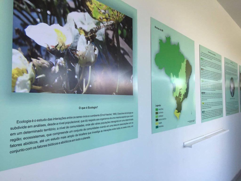 Exposição Universo das Plantas Aquáticas no Parque do Mirante