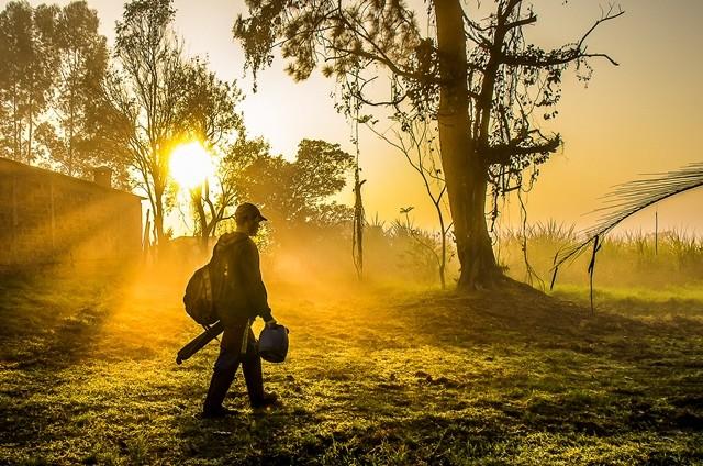 Imagens da exposição De sol a sol (2)