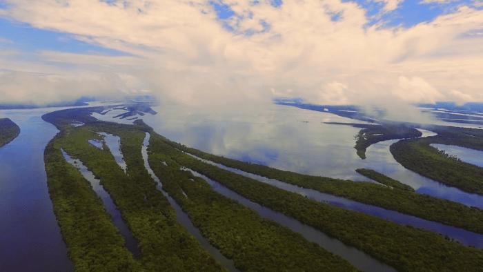 03.2019 – Meio Ambiente – Amazonia Climatica a floresta de hoje e do amanha – Amazonia Climatica – 6