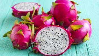 Palestra e prática sobre a cultura da pitaya