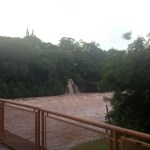 Elo chuvoso – Cynthia da Rocha