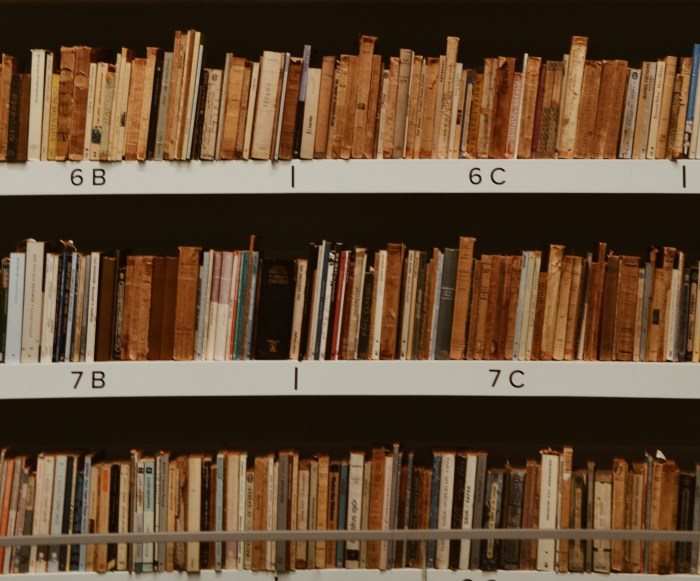 books-file-on-shelf-2128249_b
