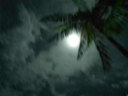 Luar do Sertão 19-01-2012 Cynthia da Rocha