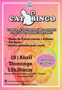 Bingo Amantes de Gatos