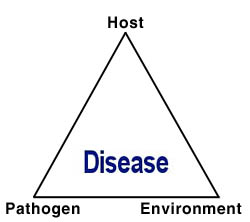 The Disease Triangle: A plant pathological paradigm revisited