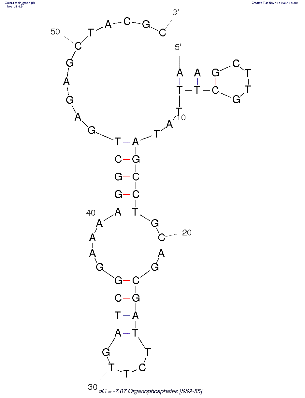 Apta-Index: Omethoate (SS2-55)