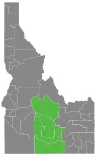 South Central District