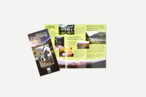 dolffanogfawr-leaflet
