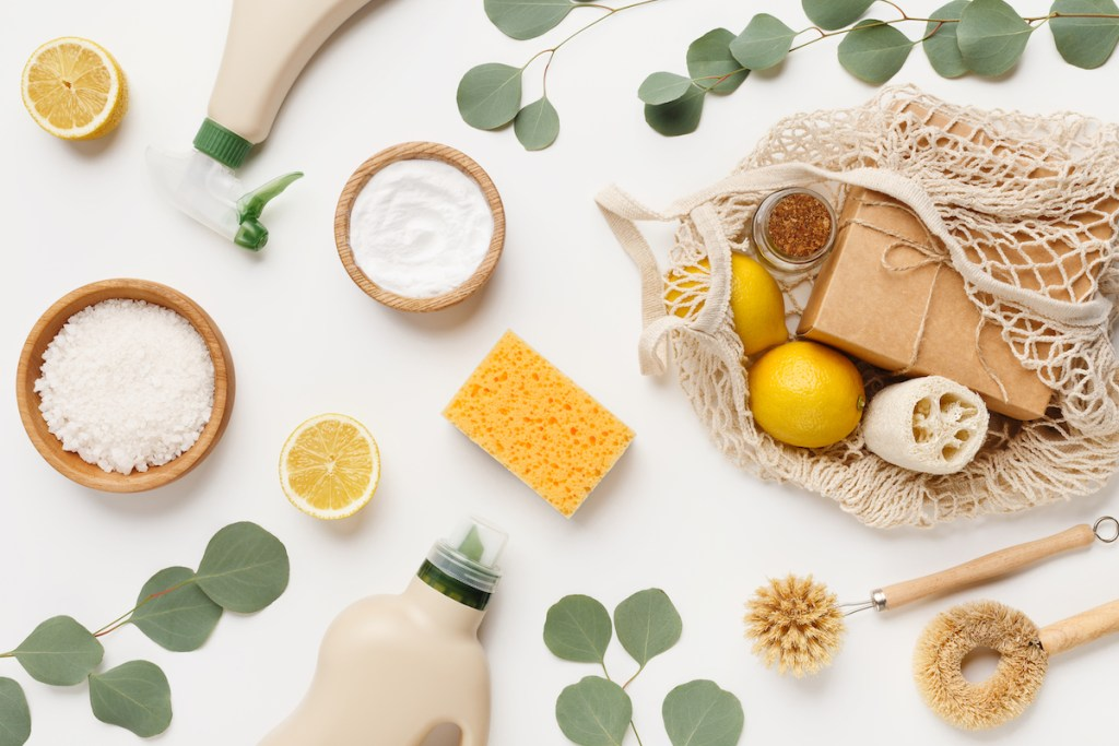 Sustainable Cleaning Products and Eucalyptus