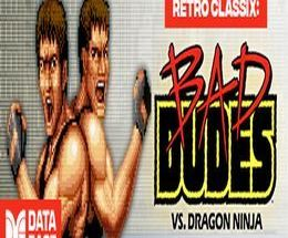 Retro Classix: Bad Dudes Pc Game