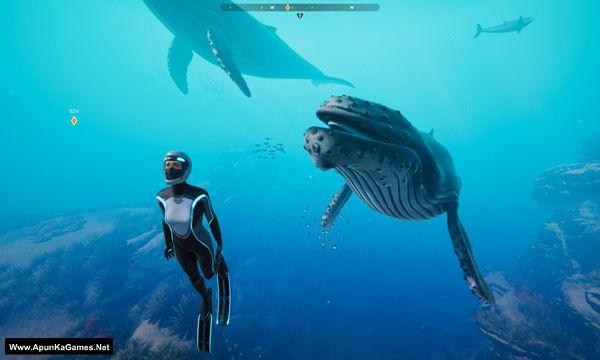 Beyond Blue Screenshot 1, Full Version, PC Game, Download Free