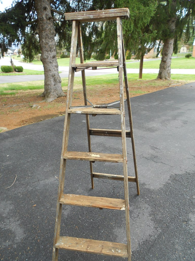DIY Ladder Garden / How to transform an old ladder into a cute and fun garden / Painted ladder