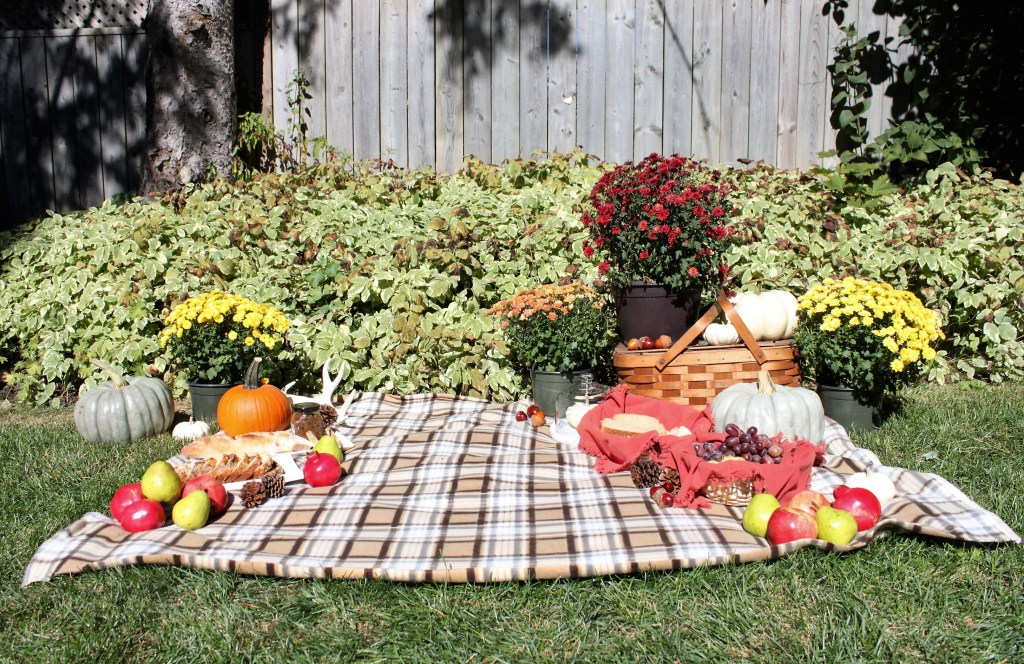Outdoor Fall Picnic at apurdylittlehouse.com