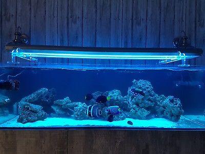 iluminación de acuario tubo T5 Sunpower de ATI