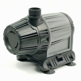 WP6000