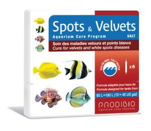 SPOTS & VELVETS - SALT