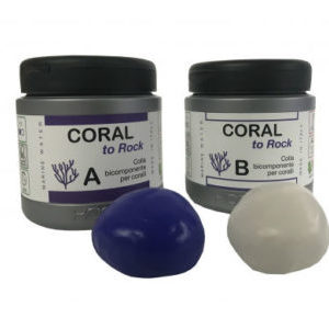 coral-to-rock-770x353