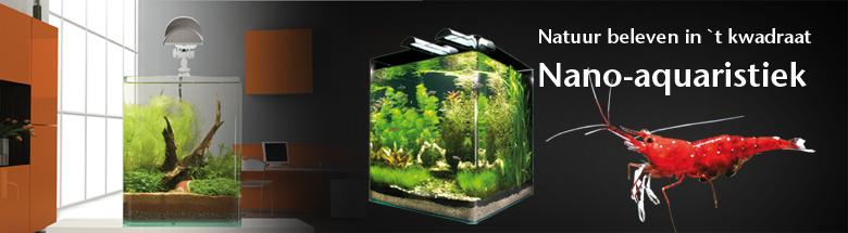 Dennerle nano aquaria  Aqua ferrytale