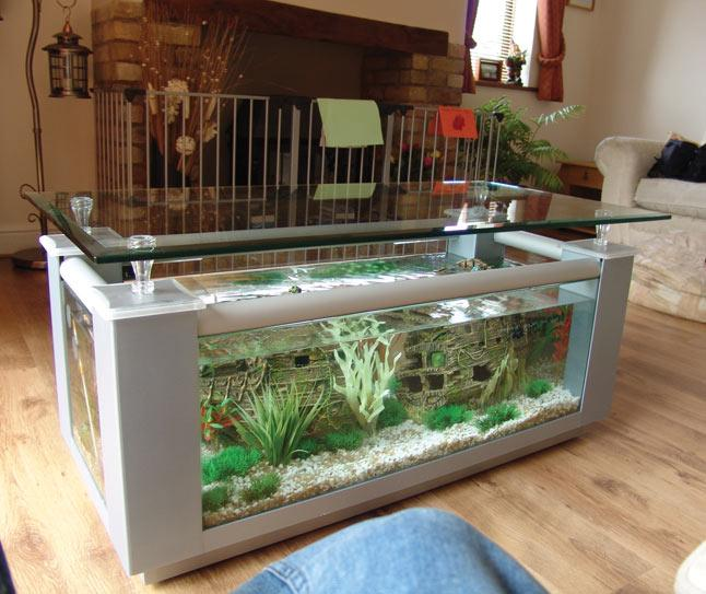 Table Tanks  Bespoke Designer Aquariums  Custom Fish