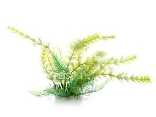 Plastično bilje CABOMBA zelena 14-17cm