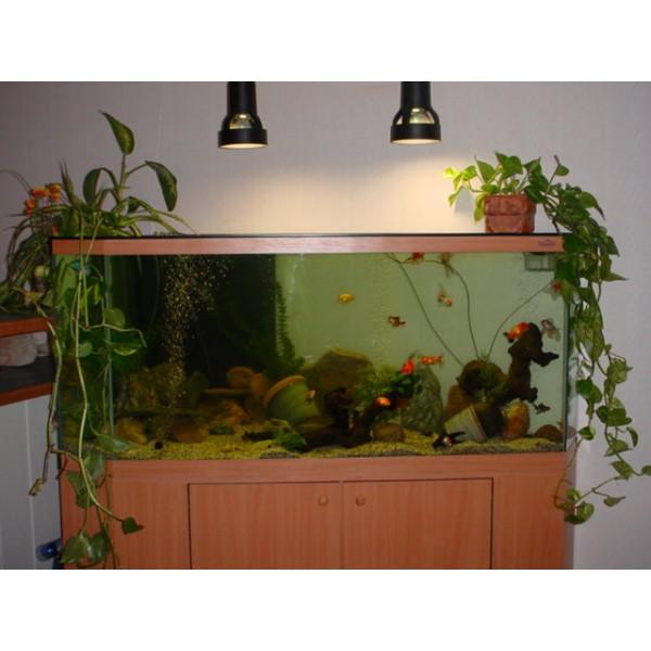 Aquarium Dangle 350 Litres Et Meuble Aquabiance