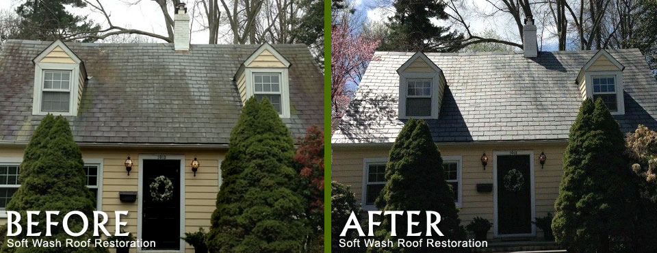 Image Result For Roof Restoration Company
