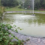 Commercial pond clean Bristol