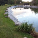 Pond bank improvements