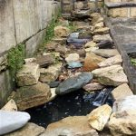 Water feature repair