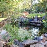 We visit this pond build Bristol a year later